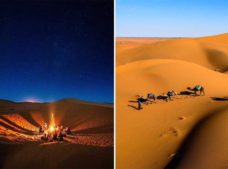 Bedouin Sahara