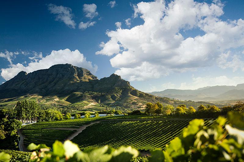 Delaire-Graff-Wine-Estate